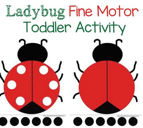 ladybug-feature