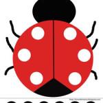 ladybug2-1