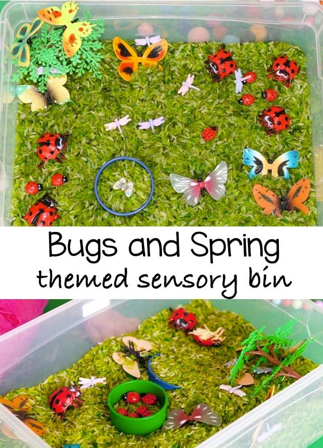 bugs-themed-sensory-bin-pin