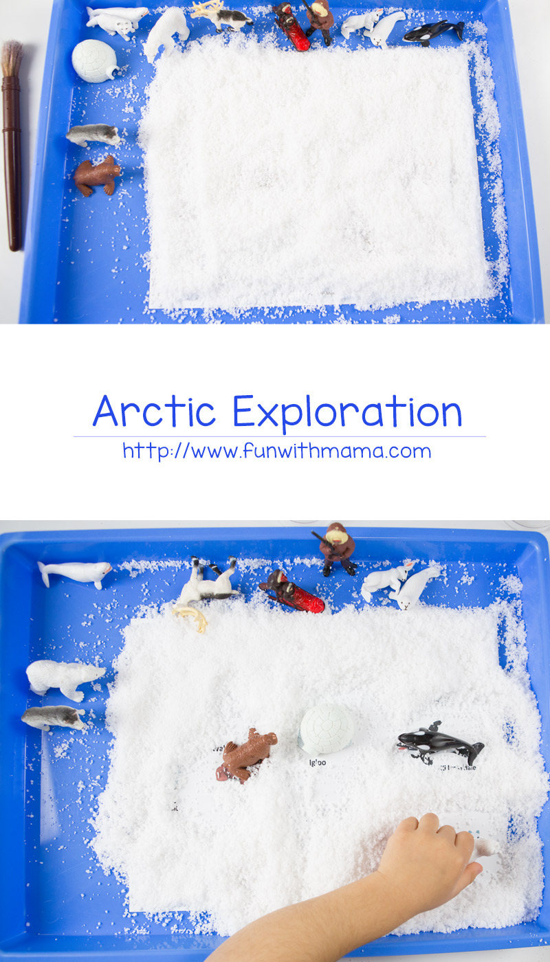 Printable Safari Ltd Toob toys fun snow hunt activity for kids. Your child will explore arctic animals with a sensory bin and work on fine motor skills.