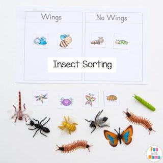 Preschool Insect Theme Sorting Worksheet + Bug Activities