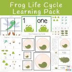 Life Cycle Of A Frog For Kids