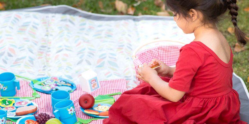Picnic Pretend Play for Preschoolers
