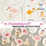 Flamingos Preschool Pack