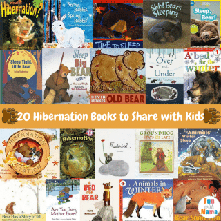 20 Bear Hibernation Books + Animals That Hibernate For Kids