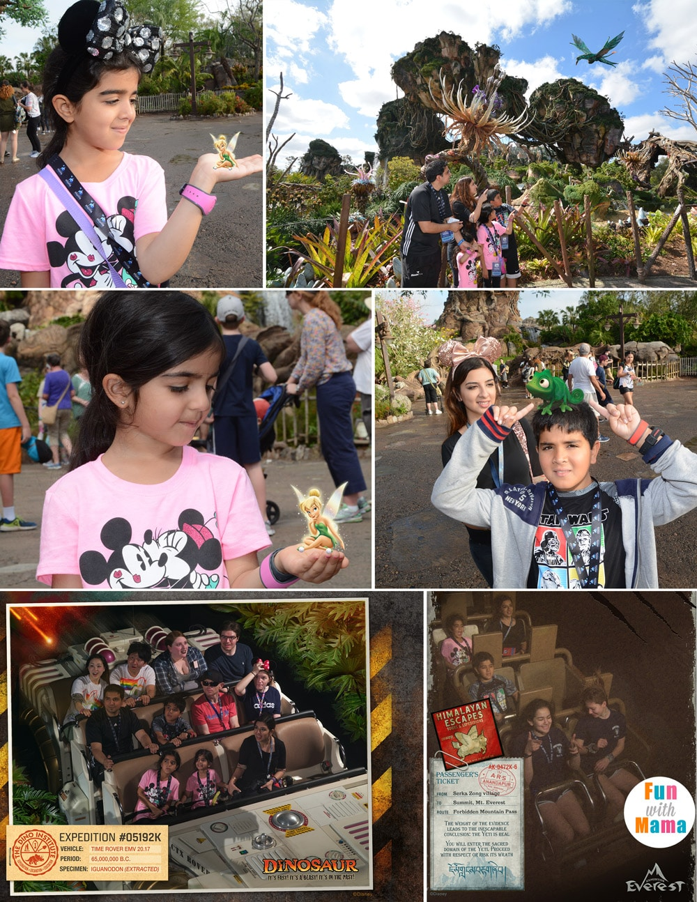Animal Kingdom magic pictures