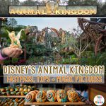Disney Animal Kingdom Fastpass Tips + Pandora Disney World Tips