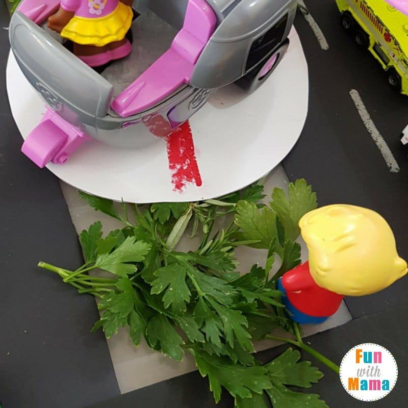 easy transport sensory bin herbs