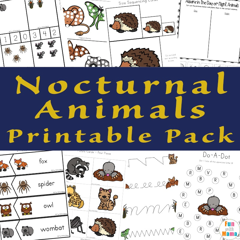 Image of: Daytime Nighttime Nocturnal Animals For Kids Fun With Mama Nocturnal Animals For Kids Fun With Mama
