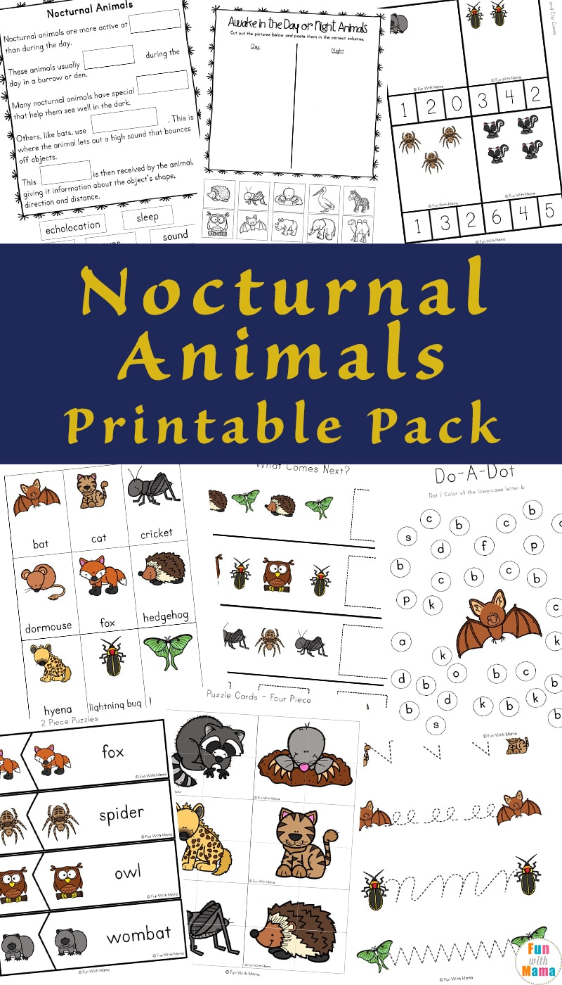 Teaching kids about Nocturnal animals is not only fun but can help teach many different areas. This includes counting, sorting and of course nocturnal animals.