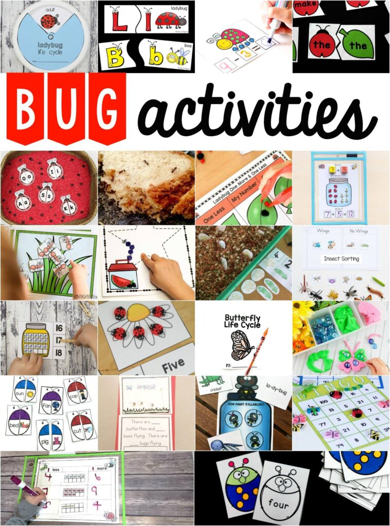 preschool insect theme