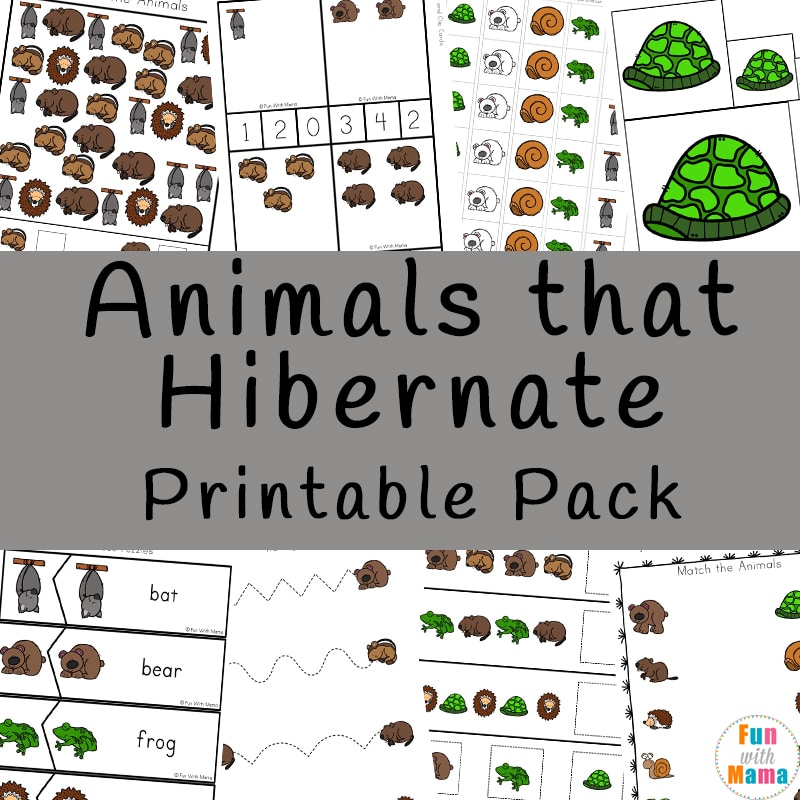 animals that hibernate