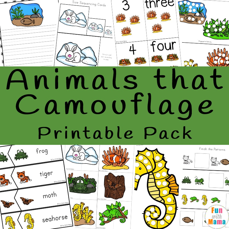 animals that camouflage