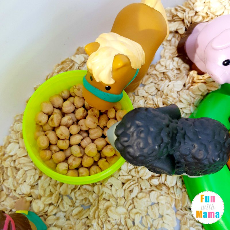 farm sensory bin feeding the animals