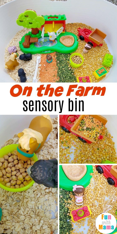 on the farm sensory bin