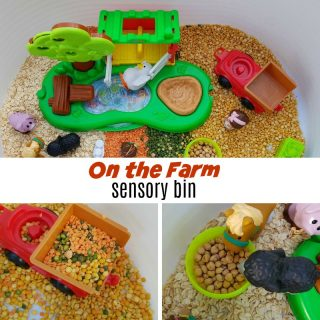 on the farm sensory bin square