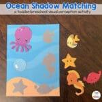 Ocean Shadow Matching