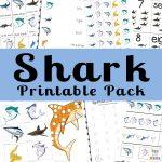 Shark Week Activities For Kids