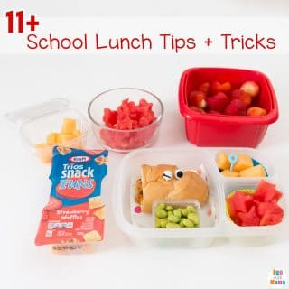 11+ School Lunch Ideas Tips, Tricks and Hacks!