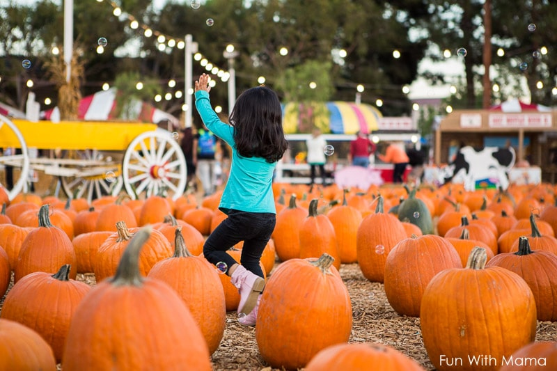 pumpkin city lake forest review