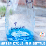 Water Cycle in a Bottle – Water Cycle Activity for Earth Day