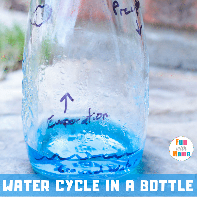 water cycle in a bottle