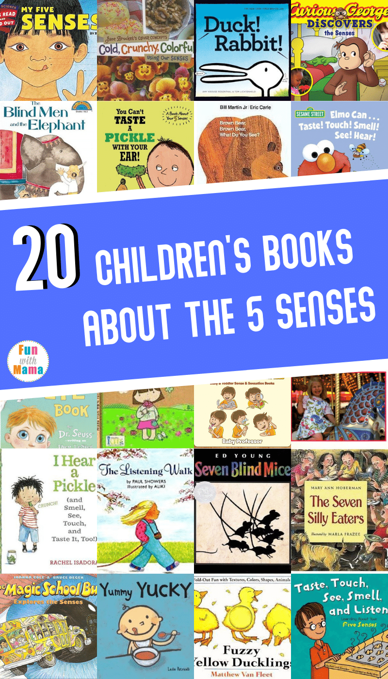 books about senses for kids