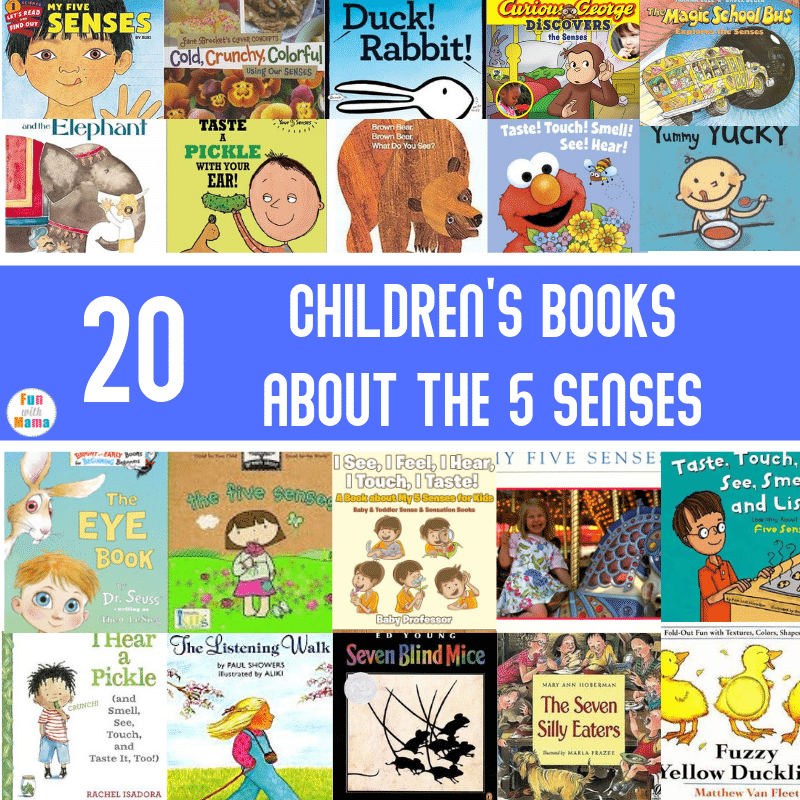 books about the 5 senses