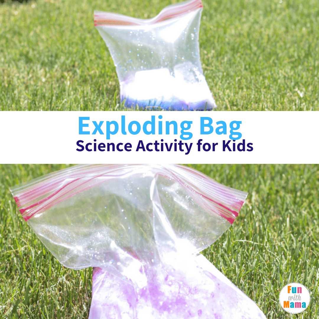 fun science activity for kids