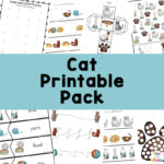 Educational and Fun Cat Printable Pack – Preschool Worksheet Printable