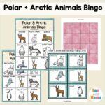 Arctic Animal Bingo Kids Game