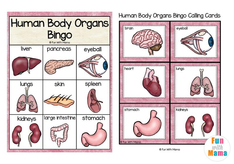 bingo printable for kids