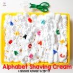 Alphabet Shaving Cream Letters