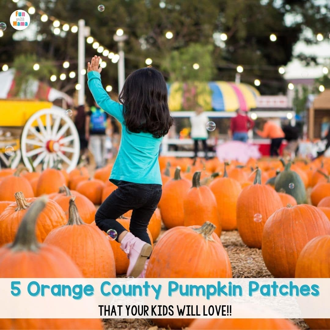 pumpkin patch orange county